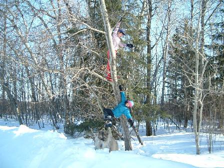 木登り二人組み