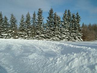 除雪11292