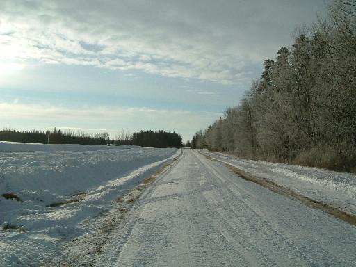 除雪された家の前の道12072007