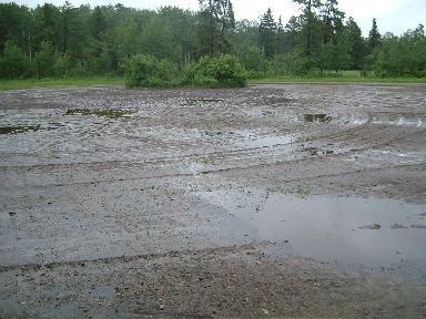 水浸しの庭06182007