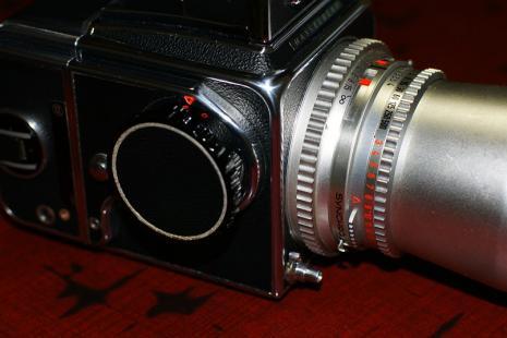 DSC02353-s.jpg
