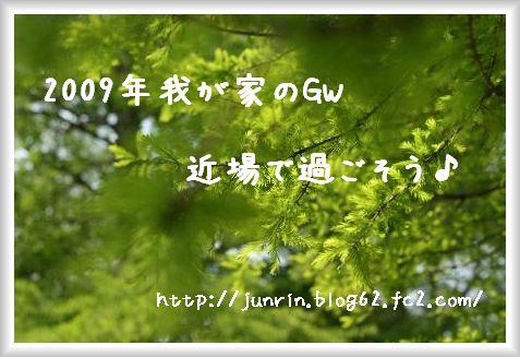 905012.jpg