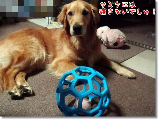 momo.vivi.sasuke 004-1