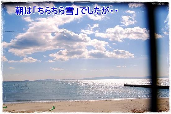 DSC_0002_20110131210216.jpg