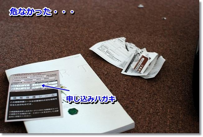 DSC_0004_20120111214516.jpg