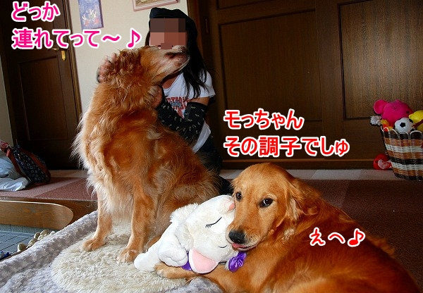 DSC_0005_20110509005306.jpg