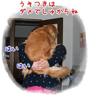 DSC_0005_20110601193104.jpg