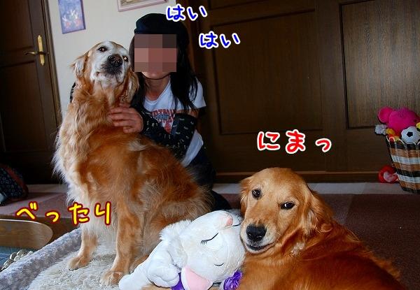 DSC_0006_20110509005306.jpg