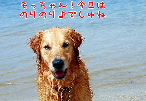 DSC_0007_20110505012646.jpg