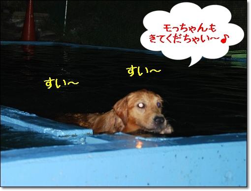 DSC_0009_20100903215603.jpg