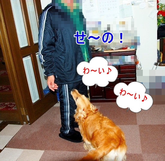 DSC_0009_20110519173604.jpg