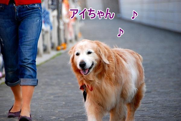 DSC_0023_20110506212246.jpg