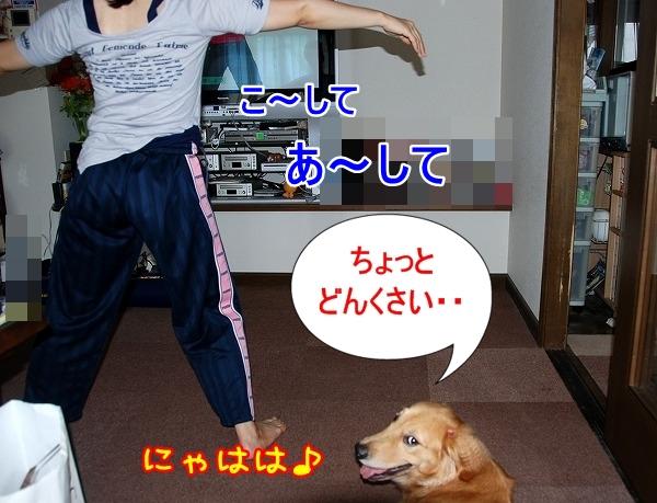 DSC_0036_20110701164939.jpg