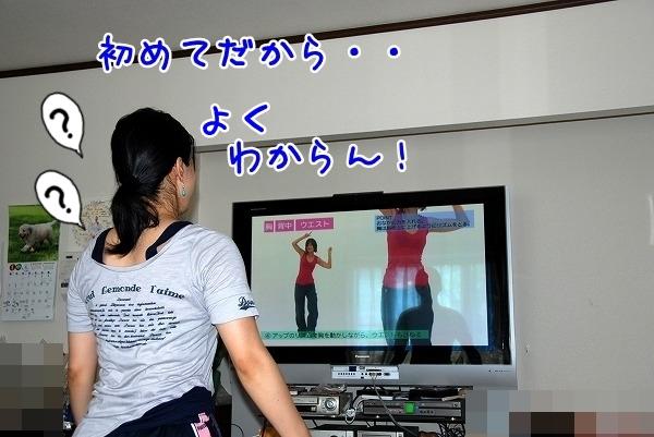 DSC_0038_20110701164939.jpg