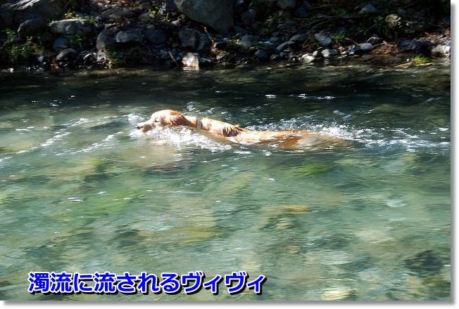 DSC_0038_20110925002817.jpg