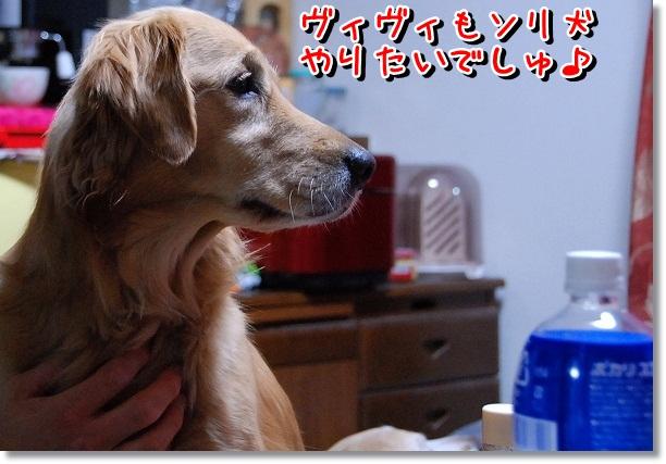 DSC_0039_20120226163032.jpg