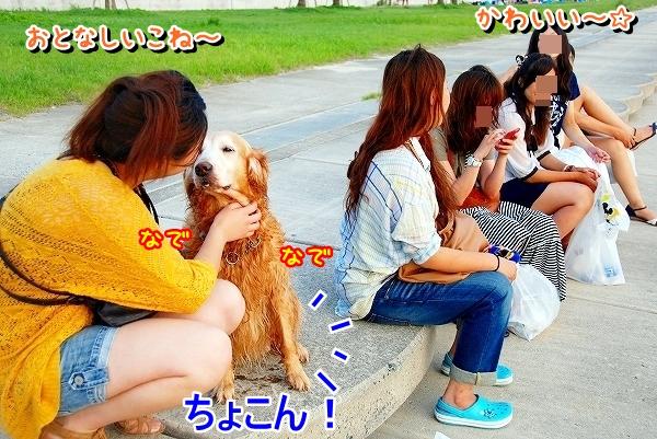 DSC_0041_20110810175026.jpg