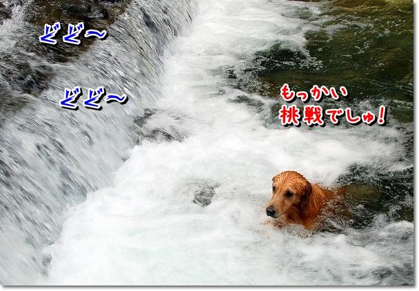 DSC_0043_20110914172741.jpg