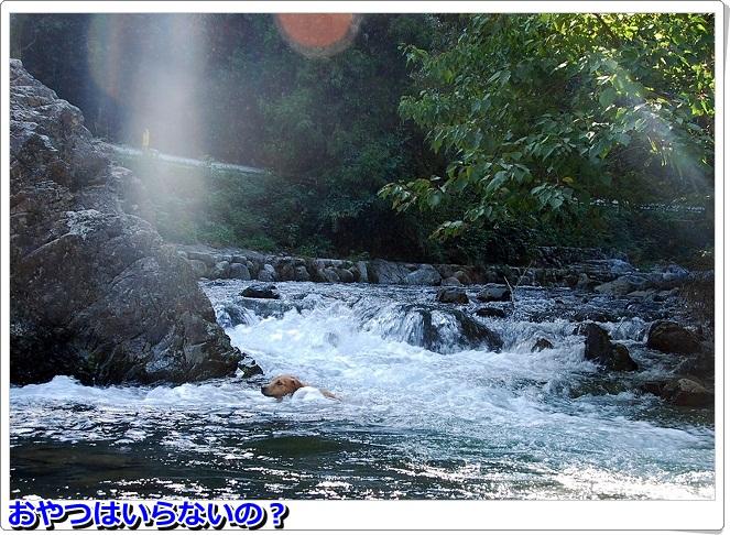 DSC_0043_20110925002925.jpg