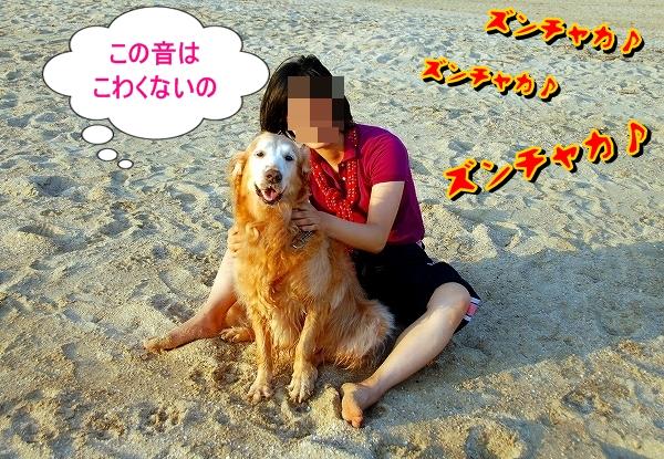 DSC_0045_20110820213713.jpg
