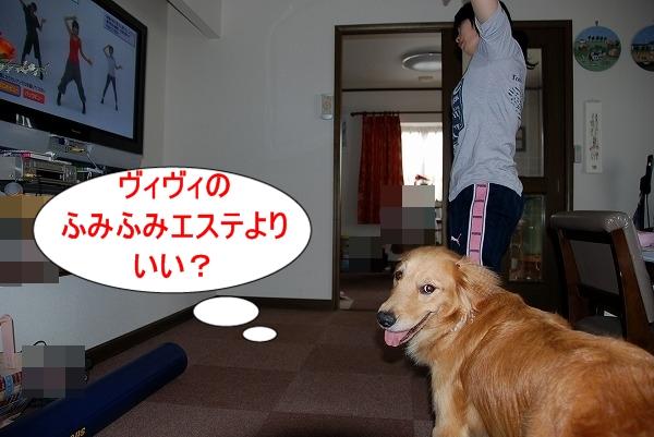 DSC_0046_20110701165115.jpg