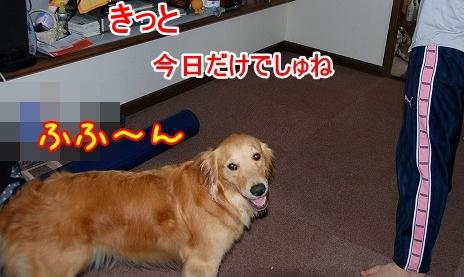 DSC_0048_20110701165115.jpg