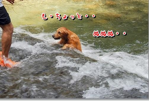 DSC_0049_20110914172740.jpg