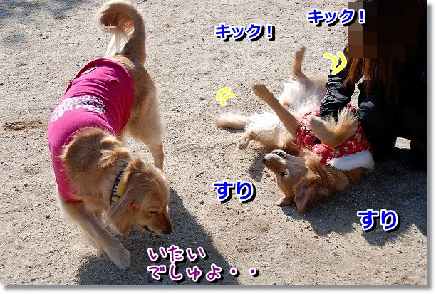 DSC_0057_20120227220929.jpg