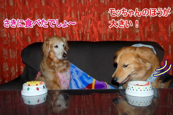 DSC_0061_20110521225827.jpg