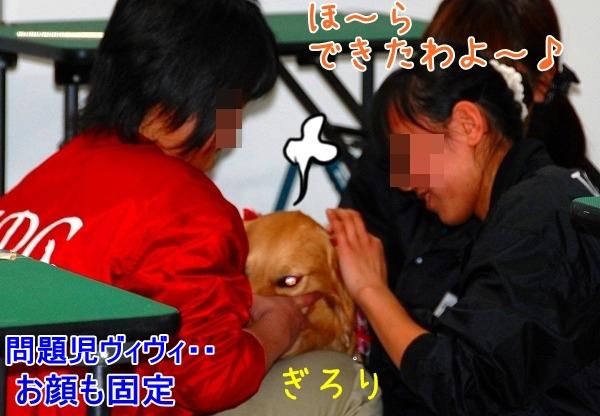 DSC_0063_20110207210154.jpg