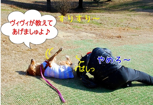 DSC_0069_20110204222743.jpg