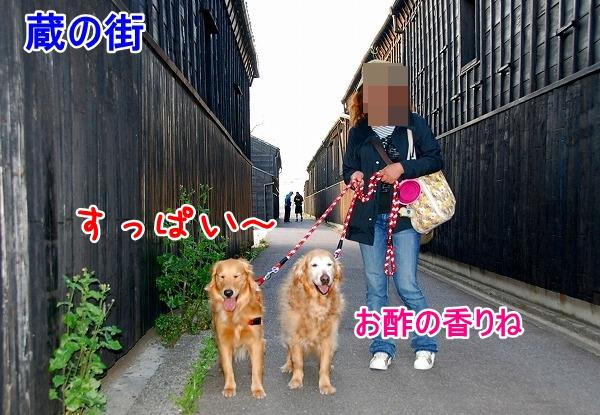 DSC_0076_20110506212324.jpg