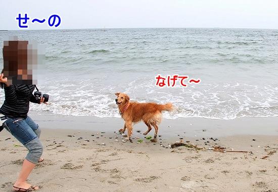 DSC_0076_20110518223526.jpg