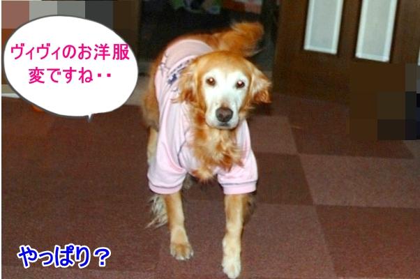 DSC_0086_20110224212811.jpg