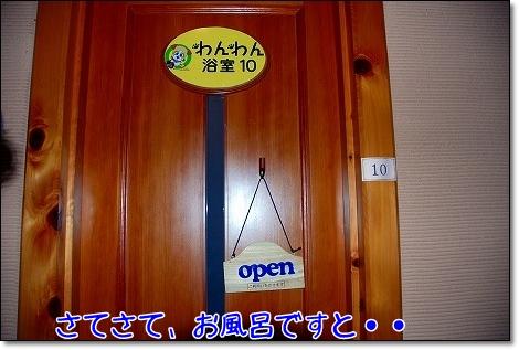 DSC_0097_20101122004306.jpg