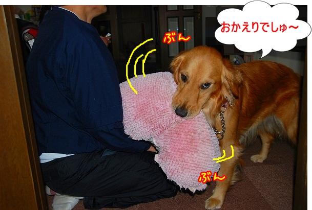 DSC_0097_20110322020609.jpg