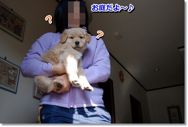 DSC_0099_20120212005513.jpg