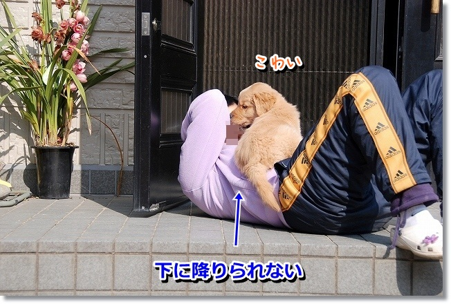 DSC_0107_20120212005510.jpg