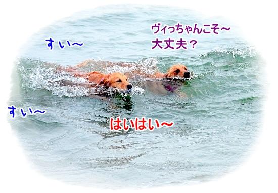 DSC_0127_20110518223654.jpg