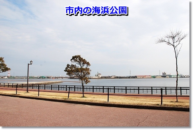 DSC_0132_20120208004803.jpg