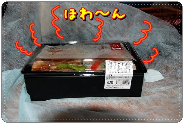 DSC_0140_20110825120326.jpg