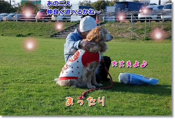 DSC_0175_20120408010805.jpg