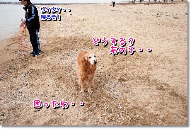 DSC_0178_20120208004913.jpg