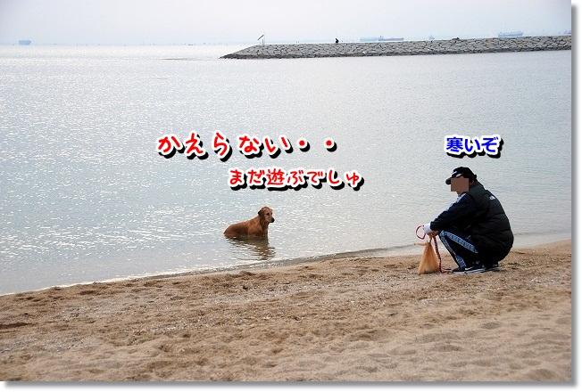 DSC_0179_20120208004913.jpg