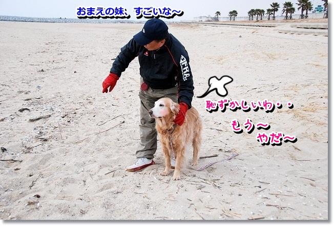 DSC_0181_20120208004912.jpg