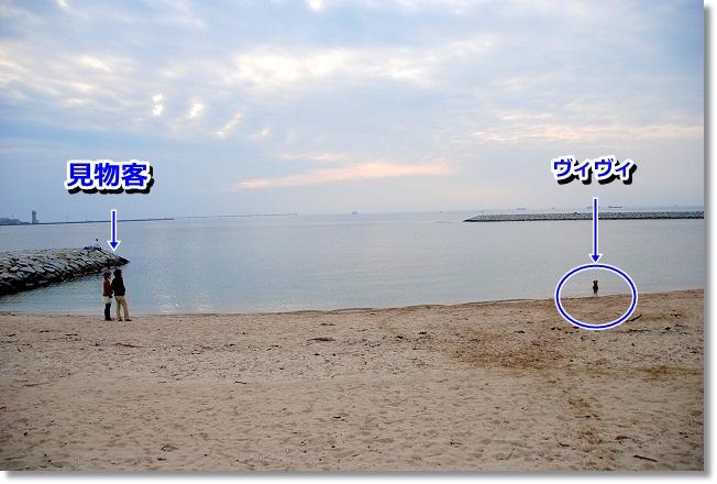 DSC_0182_20120208004912.jpg