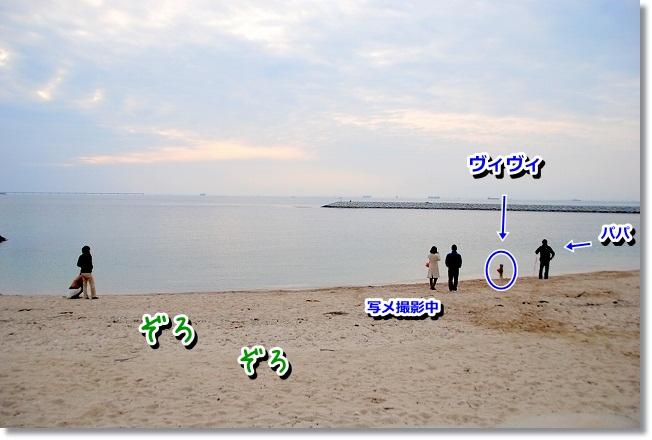 DSC_0184_20120208004911.jpg