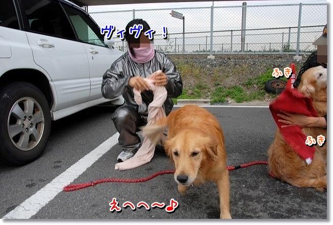 DSC_0216_20111126014750.jpg