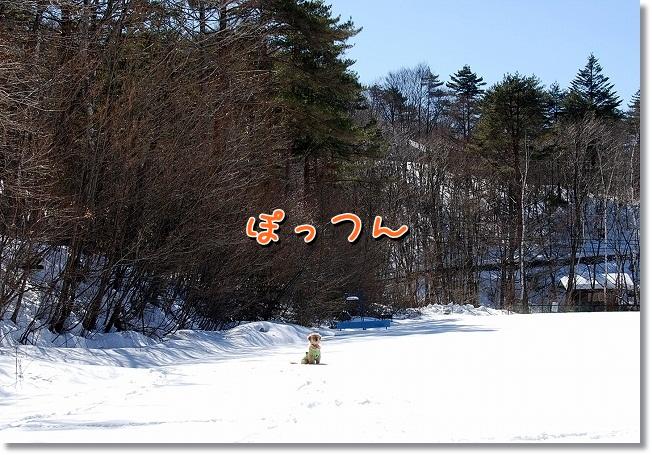 DSC_0270_20120220223651.jpg