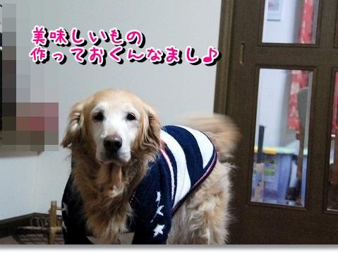 DSC_0320_20120228195734.jpg
